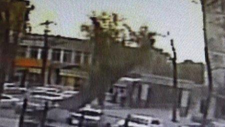 Камера запечатлела момент падения дерева, убившего мужчину в Бишкеке