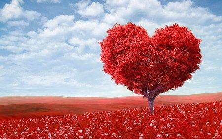 Сегодня в Казахстане отмечают День влюбленных