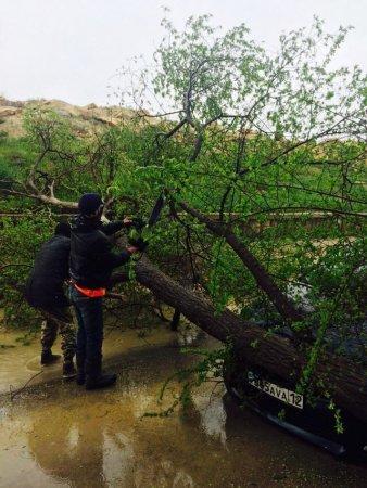 Гульнара Ходжабекова: В зоне подтопления оказались 64 улицы и 18 дворов населенных пунктов Мангистауской области