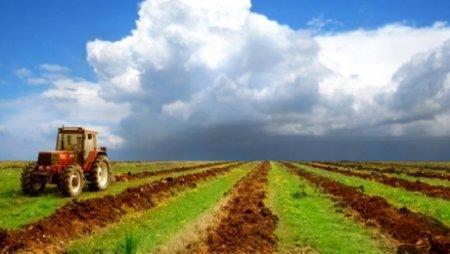 Земли сельхозназначения в Казахстане иностранцам и оралманам продаваться не будут