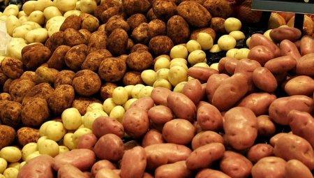 В Атырау госслужащих под страхом увольнения заставляют покупать гниющую картошку