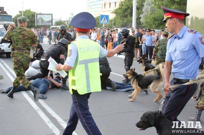 Фотоистория: Четвероногие помощники полиции