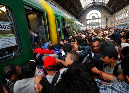 ООН: число мигрантов в мире к 2050 г. превысит 320 млн человек