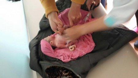 Новорожденному заткнули рот туалетной бумагой и выбросили в мусорный бак в Карагандинской области
