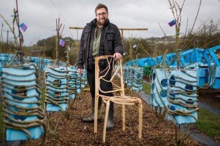 Британец выращивает в саду столы и стулья