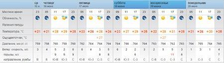 В Мангистауской области ожидается жара до 43 градусов