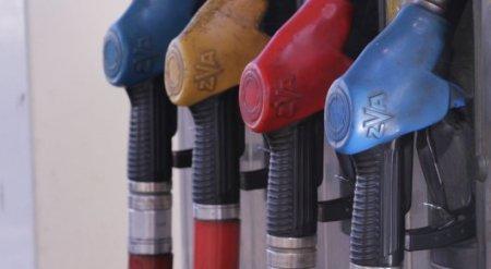Масимов намерен добиваться прозрачности при реализации топлива на АЗС