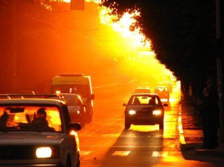 Жару и пыльные бури прогнозируют 7 августа в ряде областей Казахстана