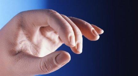 Ученые нашли способ выращивания рук и ног