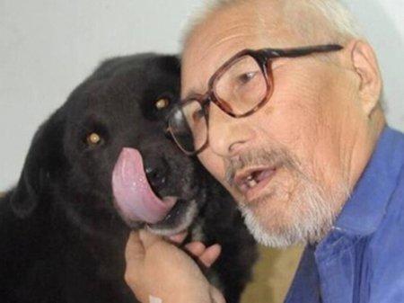 Пожилой китаец завещал свои сбережения собаке
