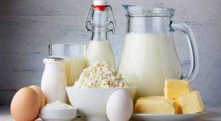 Названы города РК с самыми высокими ценами на молочные продукты