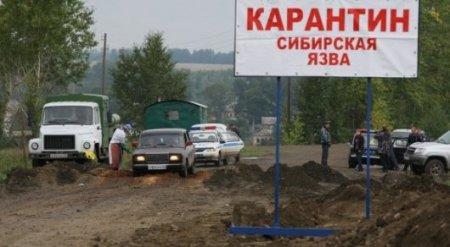 Режим ЧС из-за вспышки сибирской язвы объявлен в Карагандинской области