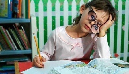 Нужно ли разрешить обучение вне школы?