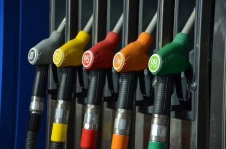 Бензин марки АИ-92 вернётся к прежней цене, прогнозирует Минэнерго
