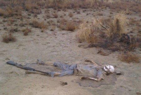 Пресс-служба ДВД Мангистау: Специалисты изучают фото скелета в степи