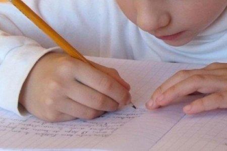 «Неправильное» сочинение казахского мальчика из КНР взорвало соцсеть