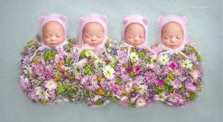 Четверняшки родились в Астане