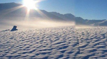 Температурный рекорд на Северном полюсе поверг ученых в шок